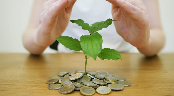 Investing for Tax-Favored Income